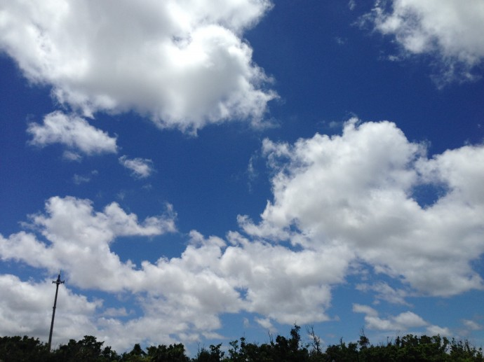 写真 2014-07-16 11 43 38