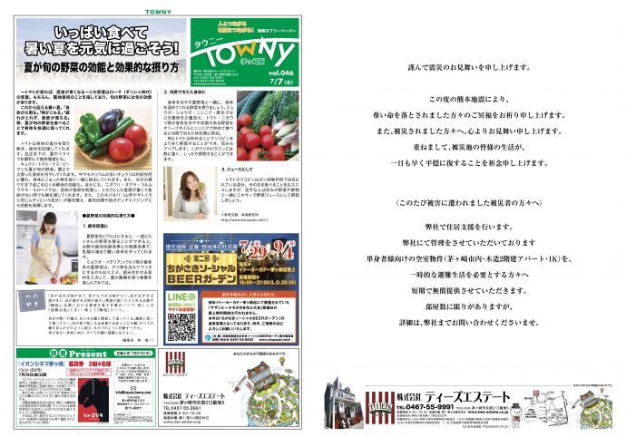 TOWNY46_1_4_ol2